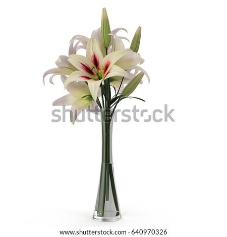 White Lily Vase On White 3d Stock Illustration 640970326 Shutterstock