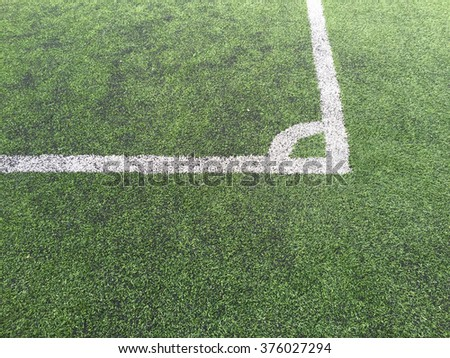 White line on a grass field background