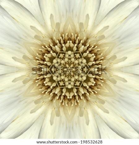 White Mandala Concentric Flower Kaleidoscope Center. Kaleidoscopic Design Pattern - stock photo