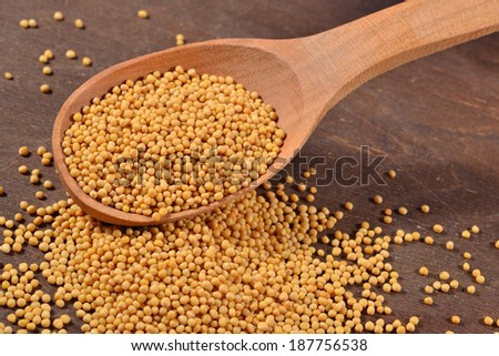 White mustard seeds in a wooden spoon - stock photo