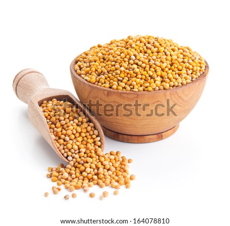 white mustard seeds isolated on white background - stock photo