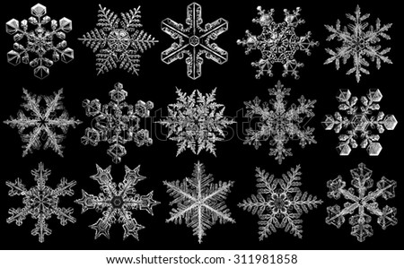 White natural snowflakes collection on black background - stock photo