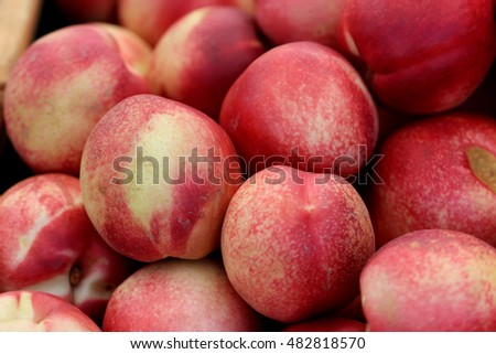 White Nectarine, Prunus persica var. nucipersica, cultivar of nectarine with red and white blush on skin and white crisp juicy flesh being less acidic than yellow variety