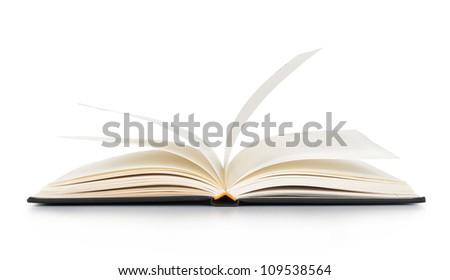 White opened book with blank pages - stock photo