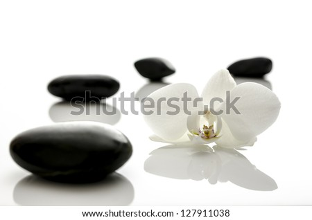 White orchid flower with spa stones. Shallow dof. - stock photo