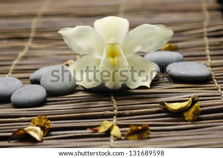 White orchid with flower dried petals and pebbles on mat - stock photo