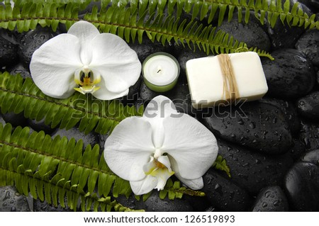 White orchid with green fern and candle,soap on pebbles
