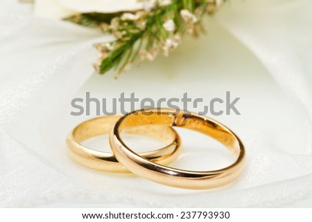 white orchids and wedding rings on white background - stock photo