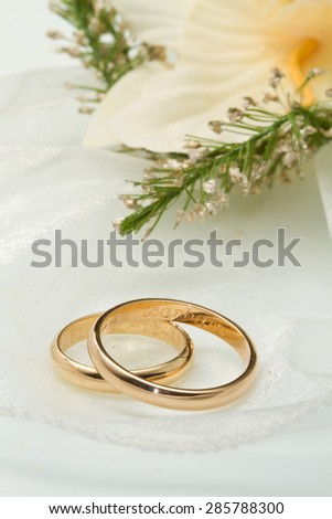 white orchids and wedding rings white background - stock photo
