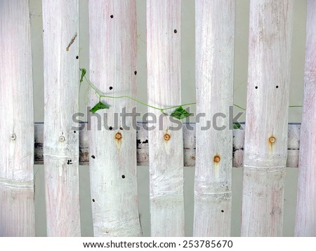 White painted fence with nails and leaves. - stock photo