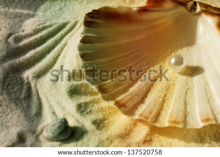 white pearl in the beautiful seashell on sand - stock photo