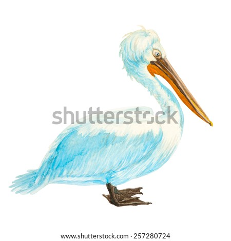 White pelican with an orange beak watercolor, clipping path included - stock photo