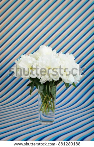 White peonies bouquet in a crystal vase on a blue and beige striped background