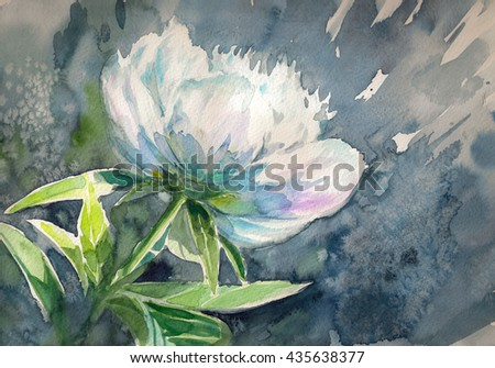 White peony flower on dark background.Picture created with watercolors.