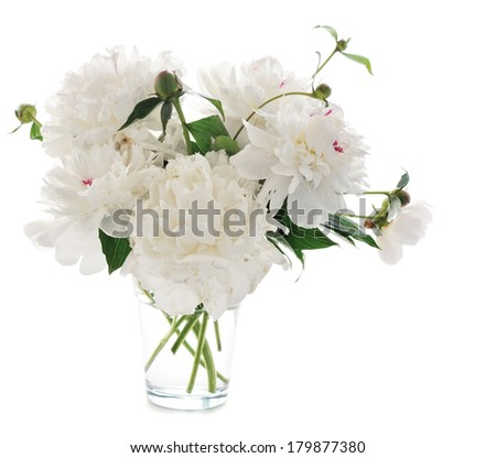 white peony in glass vase isolated on white background - stock photo