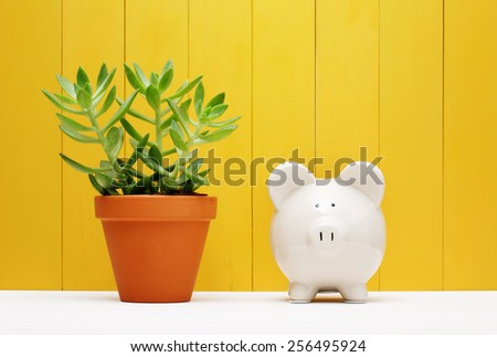 White Piggy Bank Beside Small Green Plant on a Pot with Yellow Wooden Wall Background - stock photo