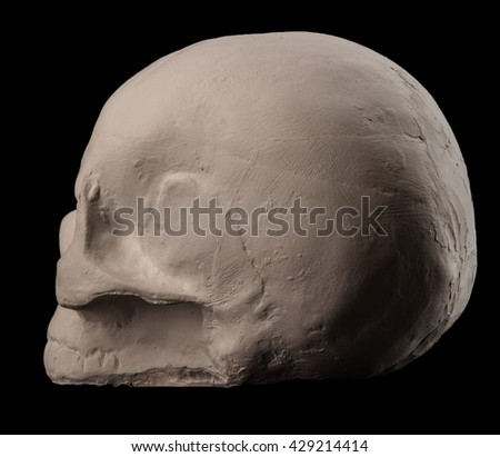 White plaster skull on a black background