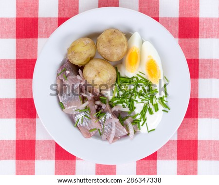 White plate with pickled herring, new potatoes,  sour cream,  chopped chives and egg on a red checkered cloth. A typical swedish midsummer meal depicted from above. - stock photo