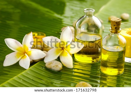 White plumeria and therapy stones ,massage oil and banana leaf texture - stock photo