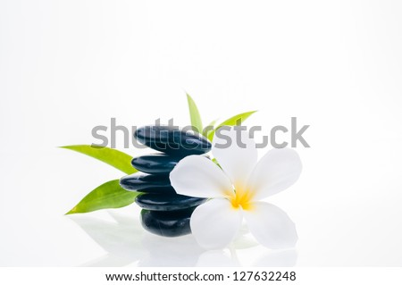 White plumeria flower, black zen stones and lucky bamboo leaves at the background - stock photo