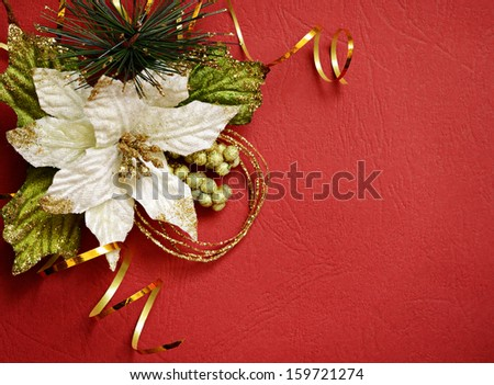 White poinsettia and golden streamer in a corner on red background - stock photo