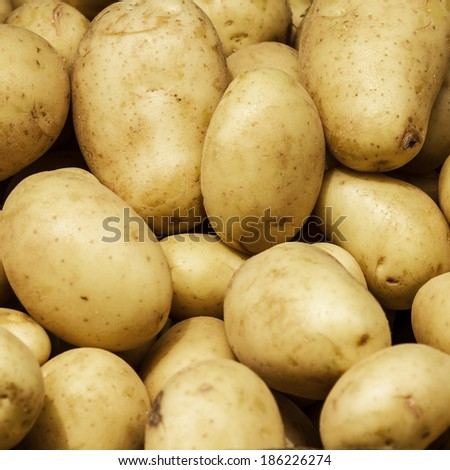 White Potato background. Food background. Group of potatoes on display at the market.  - stock photo
