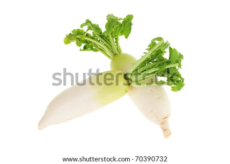 White Radish Arranged On White Background
