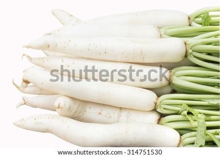 white radish root  isolated on white background - stock photo