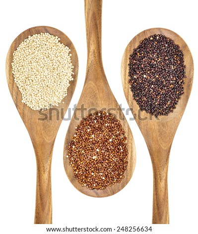 white, red and black quinoa grains on wooden spoons - stock photo
