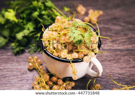 white ripe raw fresh currant with green cilantro in studio - stock photo