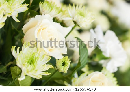 White rose and flowers - stock photo