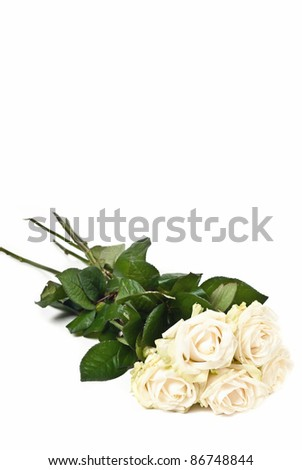 White rose bouquet isolated on white background - stock photo