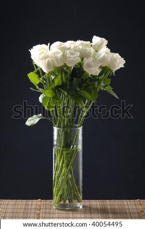 White rose in vase on black ground - stock photo