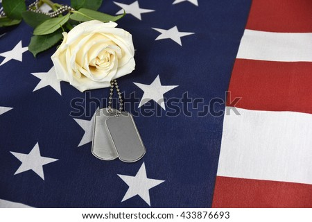 white rose with water droplets on American flag with military dog tags