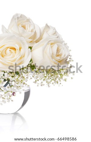 White roses in a vase with water on a white background