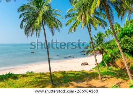 white sand beach and palm trees on a deserted island - stock photo