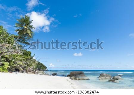 white sand beach under blue skies, Silhouette island, Seychelles - stock photo