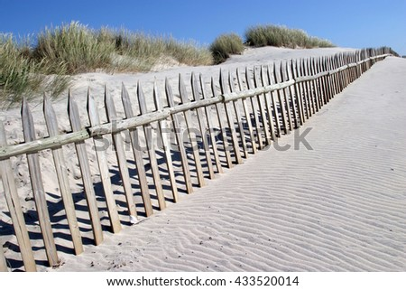 white sand on the beach with dunes in summertime - stock photo