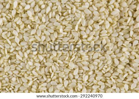White sesame seeds  background - stock photo