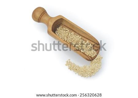 white sesame seeds superfoods - stock photo