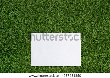 White sheet of paper lying on the grass