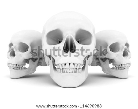 white skull on a white background isolated - stock photo
