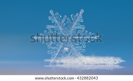 White snowflake on clear blue background: macro photo of real snow crystal, standing on it's edge and reflected in glass surface. This is very large and complex snowflake of fernlike dendrite type.