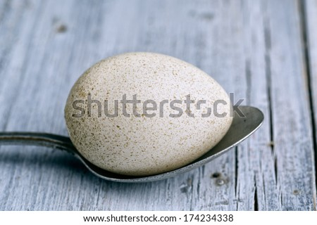 White Spotted Duck Egg and metal Spoon on wooden board - stock photo