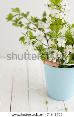 White Spring Flower Bunch Isolated on White wooden Background - stock photo