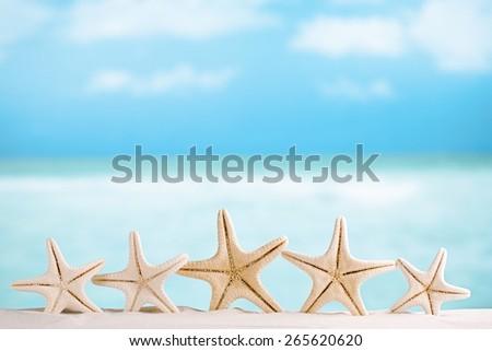 white starfish with ocean,white sand beach, sky and seascape, shallow dof - stock photo