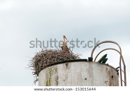 White stork (Ciconia ciconia) stands in nest on water tower top against sky background. Ugra National Park, Kaluzhsky region, Russia.  - stock photo