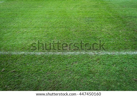 white stripe on green grass background with text space - stock photo