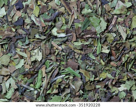 White tea loose leaf - stock photo