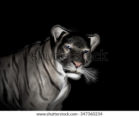 White Tiger Illustration at black background